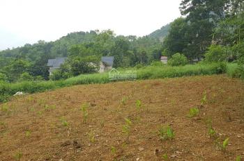 Cần bán 2500m2 đất trang trại nhà vườn tại Hòa Sơn, Lương Sơn, giá rẻ 950 triệu