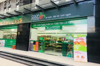 Cho thuê view Đông Nam thoáng mát + bếp điện + máy hút mùi + rèm + máy lạnh + PQL, LH: 0943838128
