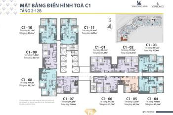 Chuyển vào Nam sinh sống cần bán cắt lỗ 400tr căn 2PN dự án D'Capitale Trần Duy Hưng. LH:0934464599