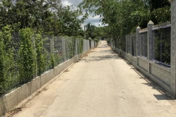 Bán đất ruộng xã Phú An, Bến Cát, Bình Dương, liên hệ: 0984.316.716