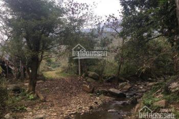 bán đất nhà vườn giá 1ty3 dt 10802 tại Yên Bình, Yên Bài, Vân Hòa, Ba Vì,...lh 0982710984