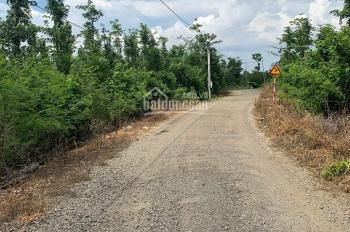 Đất mặt tiền đường nhựa ấp 2, xã Lâm San, huyện Cẩm Mỹ, tỉnh Đồng Nai
