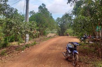 Cần bán gấp 11ha đất rẫy xã tân thắng , H Hàm Tân   Tĩnh Bình Thuận , giá 600 triệu 1 mẩu