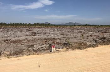 Mở bán dự án đất biệt thự nghỉ dưỡng gần biển, đã có sổ hồng riêng, DT 1000m2 giá chỉ 980 triệu