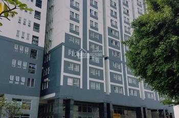 Cho thuê căn hộ chung cư Dream Home Luxury, P14, Gò Vấp, 64m2, 7 tr/th