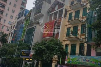 Bán gấp nhà Giảng Võ, Cát Linh, Hào Nam, Đống Đa, DT 65m2 x 4 tầng, giá 16,6 tỷ kinh doanh tốt