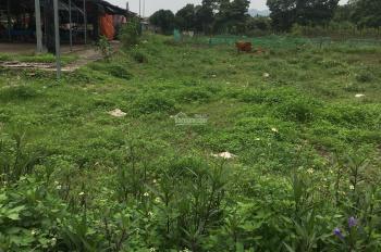 Cần bán lô đất ở Đài Xuyên, giá để đầu tư cực kì rẻ. 1,5tr/m2