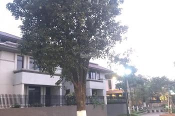 Bán nhà biệt thự An Hưng, P. Dương Nội, DT 240m2 - 264m2 - 306m2, xây thô hoàn thiện mặt ngoài