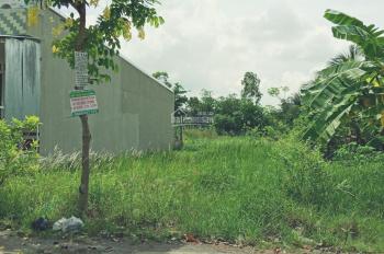 Loa loa -Bán đất mặt tiền đường Đông Bình Đông Thạnh (DH54, ở đầu đường) xã Đông Bình TX Bình Minh
