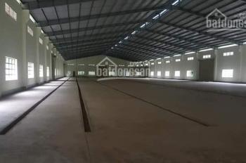 Cần cho thuê 16.000m2 đất trong đó có 8000m2 nhà xưởng tại Tân Phước Khánh 10. Giá 51.36 nghìn/m2