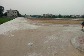 Bán đất đấu giá khu mả tre 3 tại Sinh quả-  Bình Minh- Thanh Oai - Hà Nội