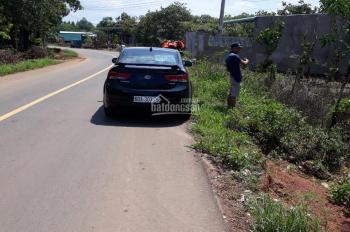 Chính chủ cần vốn bán gấp đất nông nghiệp xã Xuân Hiệp, Xuân Lộc, tỉnh Đồng Nai, cách QL1 800m