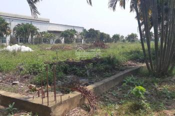 Bán 10.000m2 đất làm xưởng tại Văn Giang, Hưng Yên