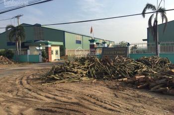 Bán nhà xưởng trong diện tích gần 5ha tại Gò Dầu, Tây Ninh