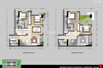 Bán căn hộ penthouse duplex ở Iris Garden Mỹ Đình