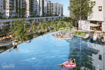 Chủ đầu từ chuyển nhượng khu căn hộ cao cấp Alnata và Brilliant thuộc dự án Celadon City Tân Phú