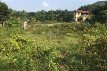 Do nhu cầu nên gia đình tôi cần bán gấp 2771m2 đất thổ cư tại thôn Trại Mới, Tiến Xuân, Thạch Thất