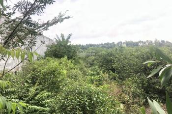 7480m2 đất vườn 2 mặt tiền xe container cách TL824(830) 400m, giá 17 tỷ