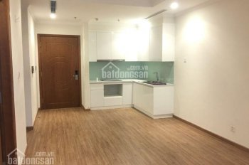 Gấp! Chính chủ cho thuê căn hộ không đồ 2 và 3 phòng ngủ, miễn trung gian (căn hộ thực tế)