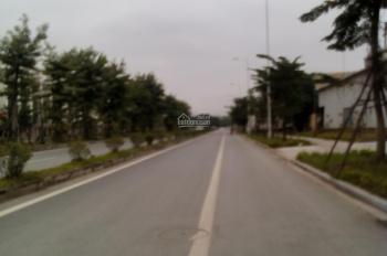 Bán đất liền kề và biệt thự tại dự án khu đô thị Thanh Hà Cienco 5, Hà Đông, 0847708866