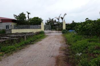 Cho thuê nhà xưởng tại Lục Ngạn, Bắc Giang