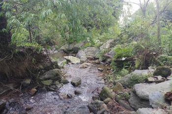 Cần bán 15.7ha đất rừng sinh thái có suối tại Yên Trung, Thạch Thất, Hà Nội