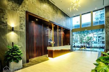 Cho thuê căn hộ An Gia Skyline 2 phòng ngủ 2 WC, giá 12 triệu, hồ bơi, sauna miễn phí