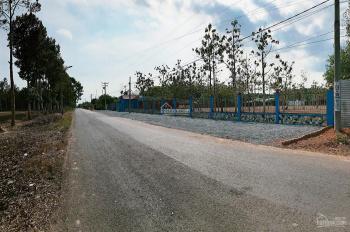 Thanh lý đất Bàu Cạn chính chủ giá rẻ, thổ cư cách sân bay Long Thành 2km
