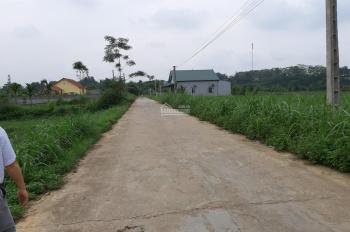 Cần bán 2300m2 đất thổ cư xã Yên Bài, vị trí đẹp