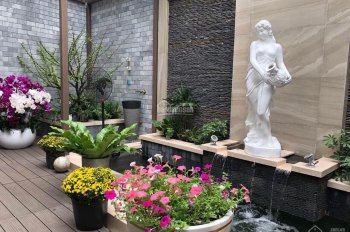 Biệt thự sân vườn 2MT hẻm hoa hậu Lê Văn Sỹ, P13, Quận 3, 7x16m. Giá chỉ 23 tỷ