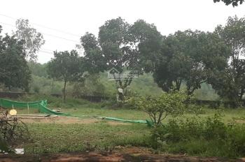 Cần bán gấp 1500m2 đất thổ cư, tại xã Cổ Đông, Sơn Tây, Hà Nội