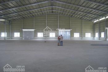 Cho thuê gấp nhà xưởng 1600m2, giá 45 tr/tháng ở đường Nguyễn Ảnh Thủ, quận 12
