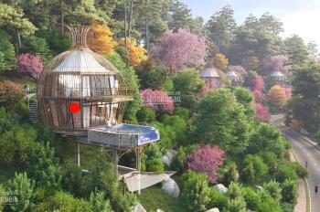 0961980322! Giải mã sức hút nghỉ dưỡng Hòa Bình - Sakana resort điểm đến các nhà đầu tư