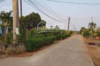 Bán đất CLN xã Bàu Cạn, Long Thành, Đồng Nai giá bao rẻ nhất khu vực