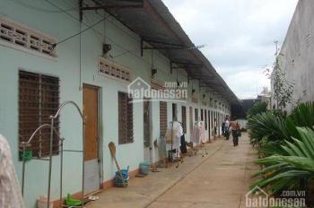Sang gấp 10 phòng trọ 180m2 mặt tiền Nguyễn Thị Búp, Quận 12, sổ hồng riêng giá 1 tỷ
