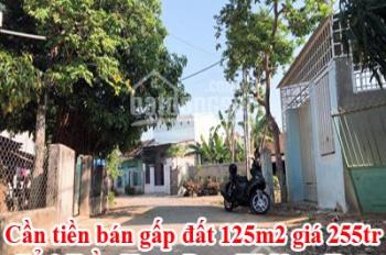 Cần tiền bán gấp đất 125m2, giá 255tr - Liên hệ: 0941910077