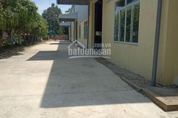 Cho thuê gấp nhà xưởng 2000m2 mới trong KCN Thanh Hóa, giá 80tr/th