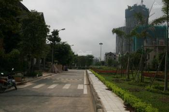 Chính chủ bán gấp 2 mảnh đất đấu giá Vạn Phúc Hà Đông dt 150m2, mt 10m, đường 17m, được xây 8 tầng