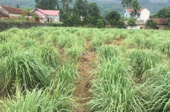 Cần bán 1440m2 đất tại thôn Thắng Đầu, xã Hòa Thạch, Quốc Oai, Hà Nội