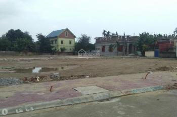 Bán đất phân lô Đống Hương 2, Quán Toan, Hồng Bàng, Hải Phòng
