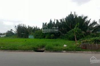 Chính chủ cần cho thuê gấp 1000m2 - 2000m2 đất mặt tiền đường Song Hành, Xa Lộ Hà Nội, Quận 2