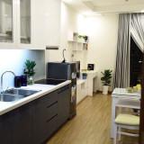 Chính chủ cho thuê căn hộ cao cấp Vinhome Green Bay, đầy đủ tiện nghi,sang trọng, 10 triệu/tháng
