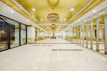 Chỉ từ 1,2 tỷ sở hữu ngay căn hộ chuẩn 5 sao ven sông Hàn, dát vàng 24k