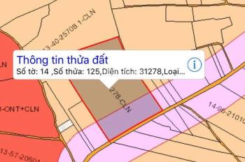Đất nào thích hợp nhà vườn Xuân Lộc, tỉnh Đồng Nai