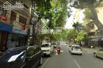 Chính chủ bán nhà mặt phố Trần Xuân Soạn - Hai Bà Trưng - HN