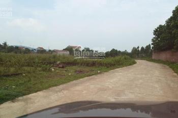 Đất TC 240m2 đường xe công đi Thái Lai, Minh Trí, Sóc Sơn làm trang trại, nhà xưởng, nghỉ dưỡng