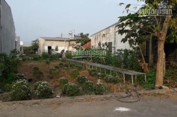 Bán đất KDC Tân Quới xã Tân Khánh Đông, Tp Sa Đéc