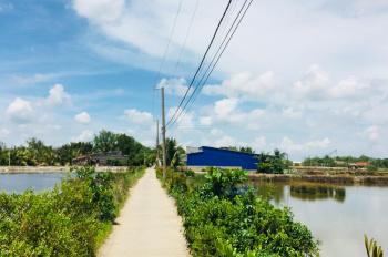 Chính chủ kẹt tiền cần bán gấp đất ở xã An Thới Đông, Cần Giờ