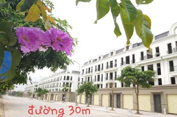 Chính chủ bán lô góc dự án Thuận An Central Lake 31ha Trâu Quỳ, giá chỉ 51tr/m2 0989.580.198