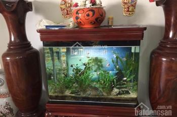 Chính chủ bán căn hộ chung cư M5 Nguyễn Chí Thanh, LH 0982491686/0983771963